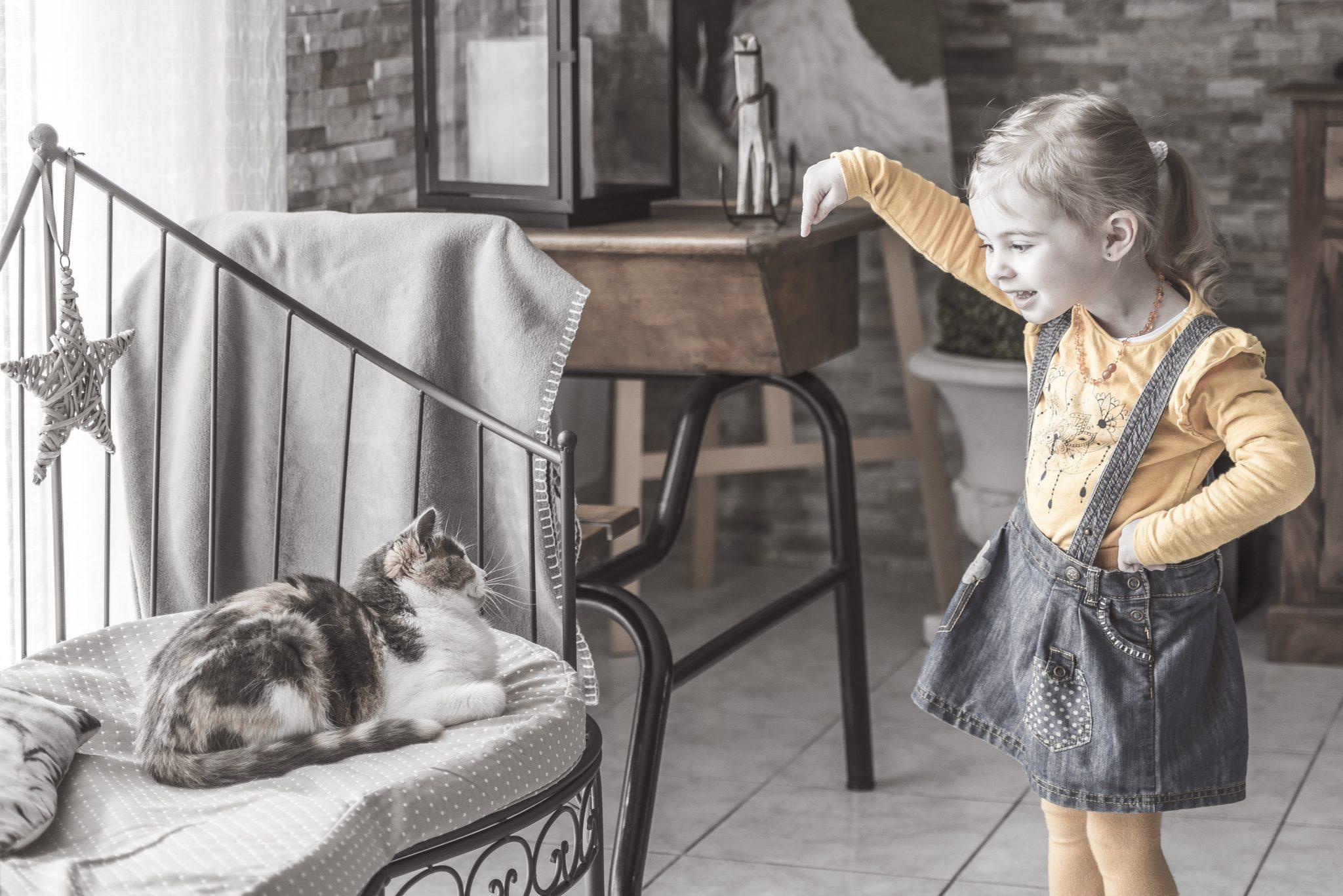 seance famille reims à domicile