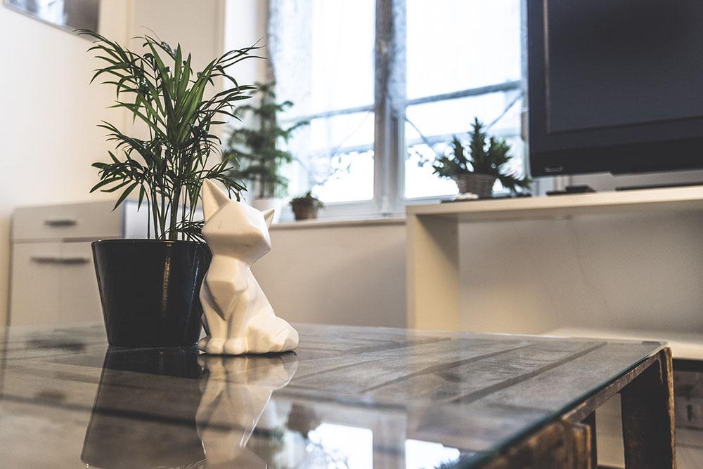 photographie immobilier airbnb à reims location courte duree