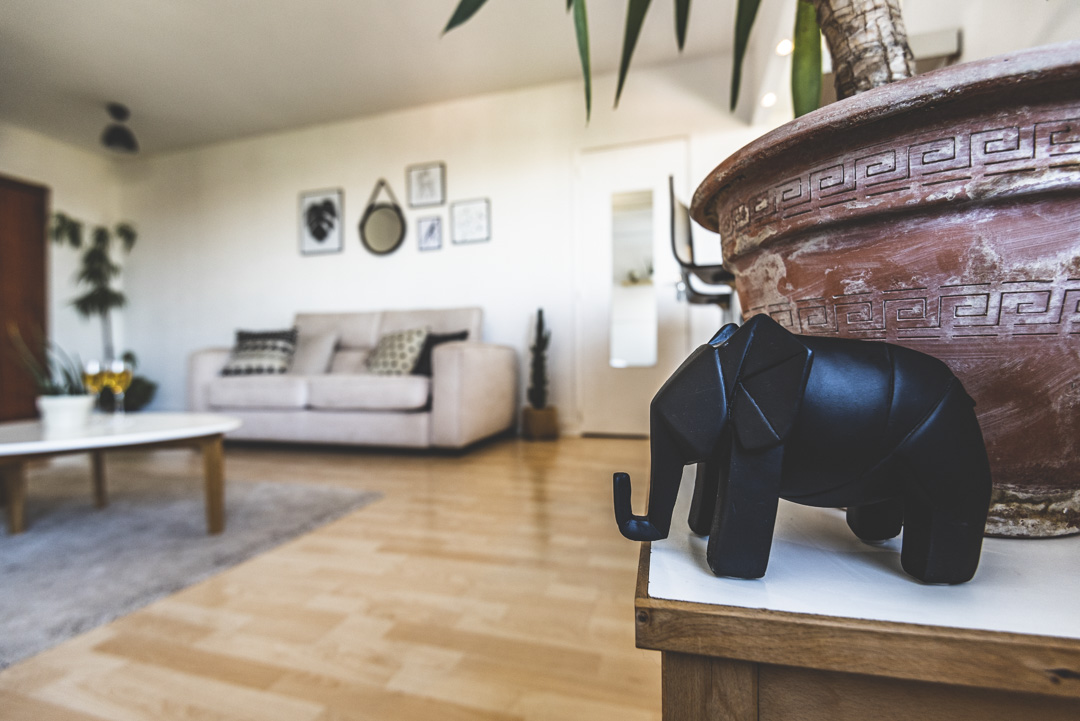 photographe pour location d'appartement